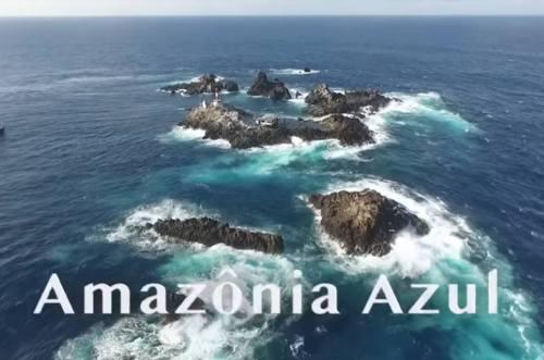 Você conhece as vertentes da Amazônia Azul?