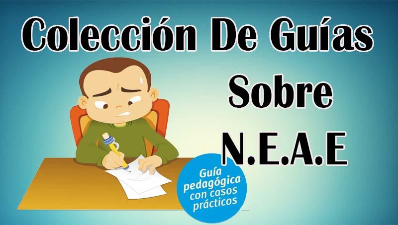 Colección De Guías Sobre N.E.A.E