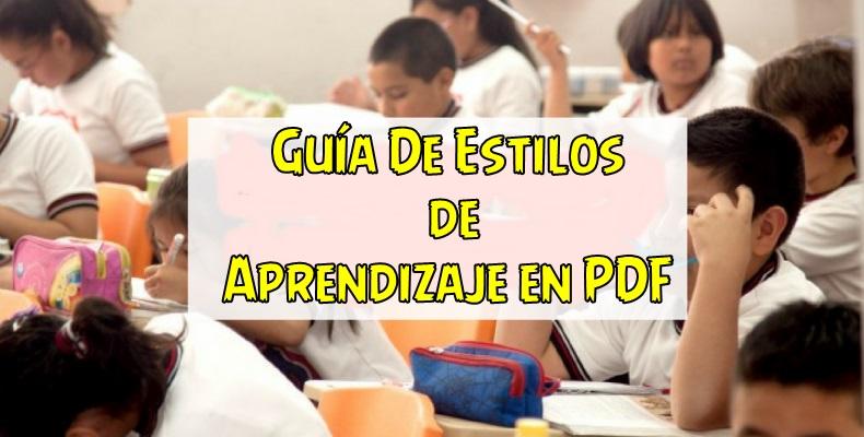 Guía De Estilos de Aprendizaje en PDF