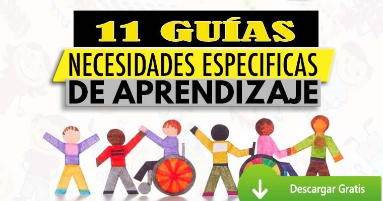 11 Guías de Necesidades Especificas de Aprendizaje – Inclusión educativa