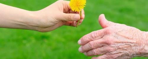 defensoria-publica-fornece-atendimento-gerontologico-aos-idosos