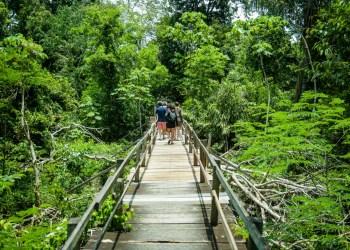 Fotos: Janailton Falcão/Amazonastur