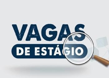 IEL AMAZONAS OFERECE 46 VAGAS DE ESTÁGIO EM DIFERENTES ÁREAS