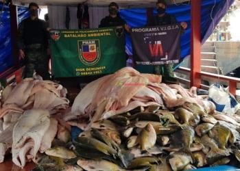 Polícia Militarpe apreende mais de 600 quilos de pescado e carne de animais silvestres em embarcações na capital