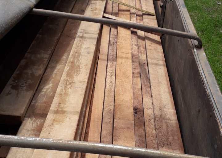 """Operação """"Tamoiotatá"""" apreende 135 metros cúbicos de madeira ilegal em Humaitá"""