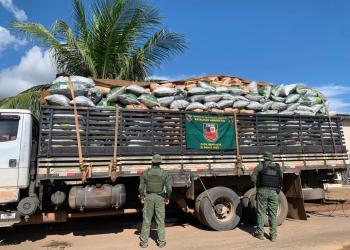 Batalhão Ambiental apreende cerca de 10 toneladas de carvão ilegal em madeireira de Humaitá