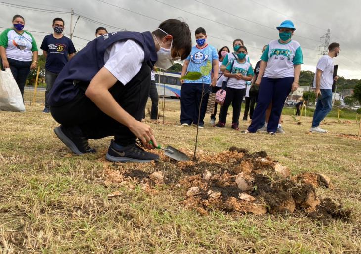 """Amom planta árvore de número 1.340 e comemora sucesso do """"#GalhoForte"""""""