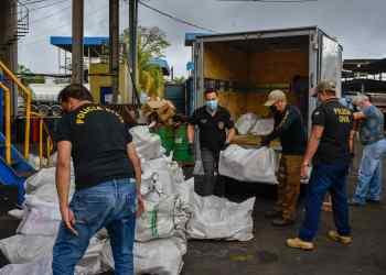 PC-AM incinera 1,5 tonelada de entorpecentes apreendidos pelo Denarc durante ações policiais no estado