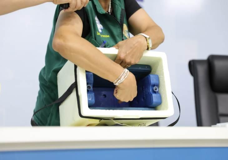 Prefeitura treina servidores da SES-AM que atuarão como registradores na vacinação deste fim de semana