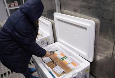 Governo do Amazonas recebe 21.800 doses da vacina CoronaVac contra a Covid-19