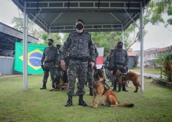Companhia de Independente de Policiamento com Cães realiza cerimônia de passagem de comando
