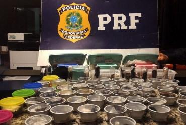 PRF prende traficante internacional russo de animais silvestres