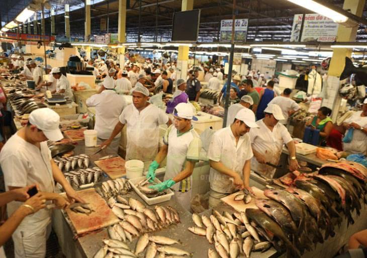 Panair Não Vende Peixe Contaminado