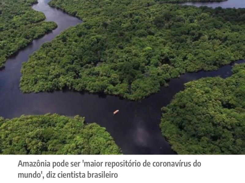 Próxima grande pandemia pode surgir no Brasil, revela cientista
