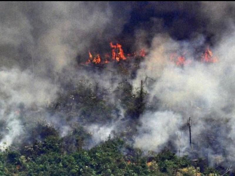 Europa vai retaliar Brasil por política ambiental desastrosa de Bolsonaro