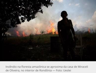 EUA querem que Brasil aja sozinho no combate ao desmatamento antes de se comprometerem a colaborar