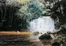 Cachoeira da Neblina, Presidente Figueiredo
