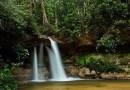 Turistas são vítimas de furtos nas cachoeiras, em Presidente Figueiredo