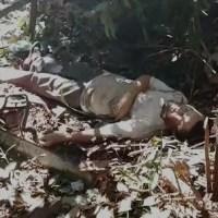 AGRICULTOR MORRE ATINGIDO POR GALHO NA CABEÇA NO RAMAL DO MARANHENSE EM PRESIDENTE FIGUEIREDO