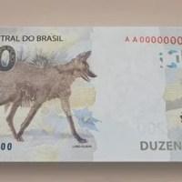 Polícia Federal estoura laboratório que fabricava notas falsas de R$ 200