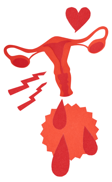 A menstruação interfere no intestino? É normal urinar mais vezes no período menstrual? Confira essas e outras dúvidas esclarecidas no texto.
