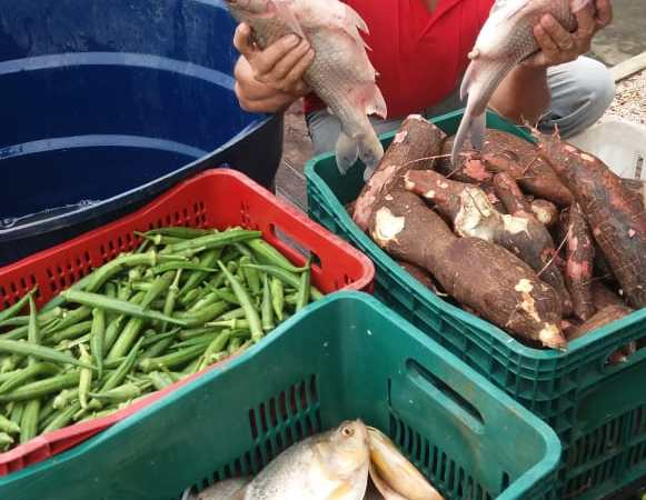 Prefeitura de Duque Bacelar garante entrega de alimentos a famílias beneficiárias de programas sociais