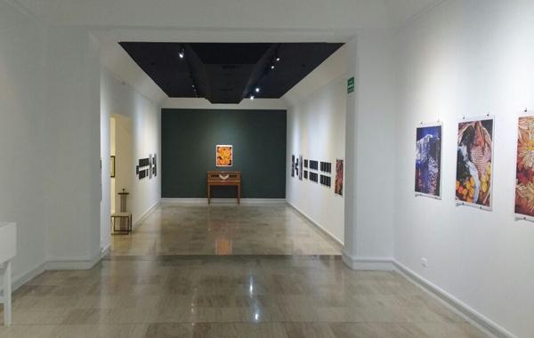 Galería Hermenegildo Bustos: «La Fotoesgrafía de Gustavo López»