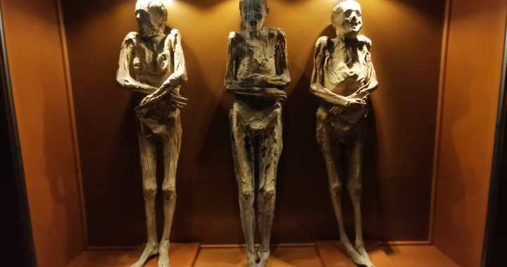 Museo de las Momias con descuento hasta marzo