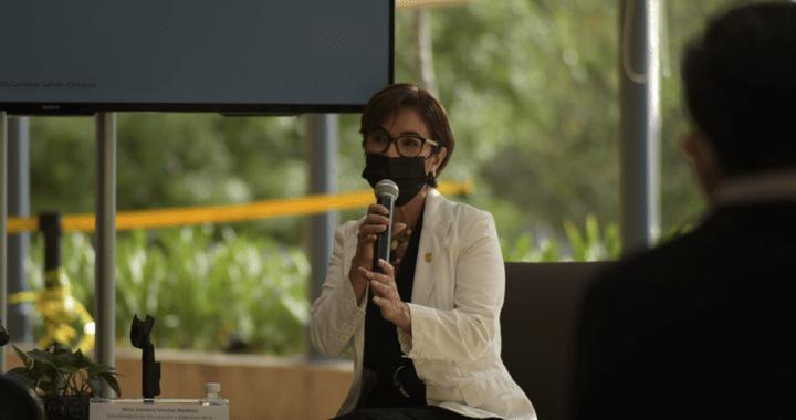 Presenta UG charla sobre arte, artesanía y cultura; una visión desde el rosa mexicano