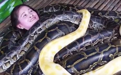 Massagem com cobras é mais nova moda mundial