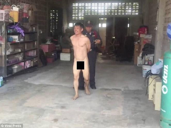 Homem apanhado a manter relações sexuais com vaca