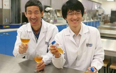 Para isso, os pesquisadores buscam cerca de 25 voluntários comprovadamente apaixonados por cerveja e com um detalhe para lá de curioso