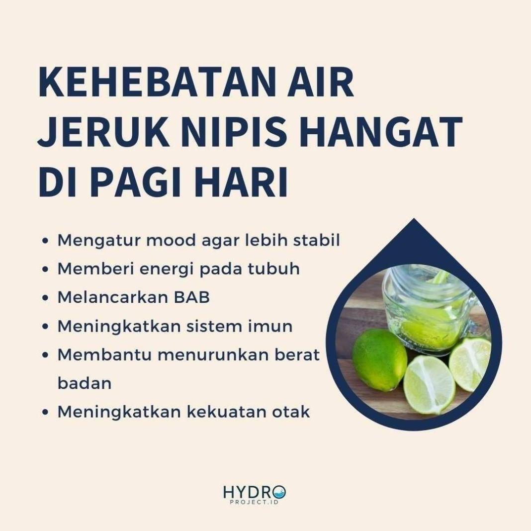 Info sehat,  TAHUKAH KAMU ?   Minum air jeruk nipis ialah cara yang baik untuk membuat tubuhmu alkal…