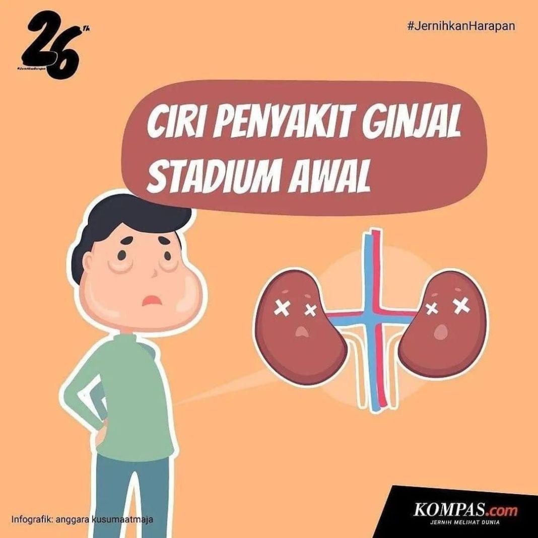 Info sehat, Ciri-ciri penyakit ginjal stadium awal terkadang diabaikan penderitanya disebabkan mirip dengan mas…