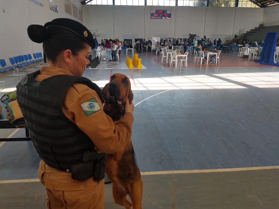 """Equipe """"Operações com Cães do 2°BPM""""  participou do evento Sesc cidadão em Jacarezinho"""