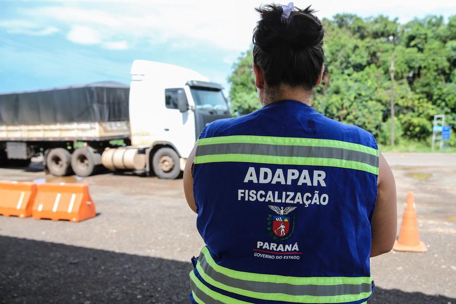 Funcionária de abatedouro é segundo caso de H1N2 no Paraná; Adapar orienta produtores