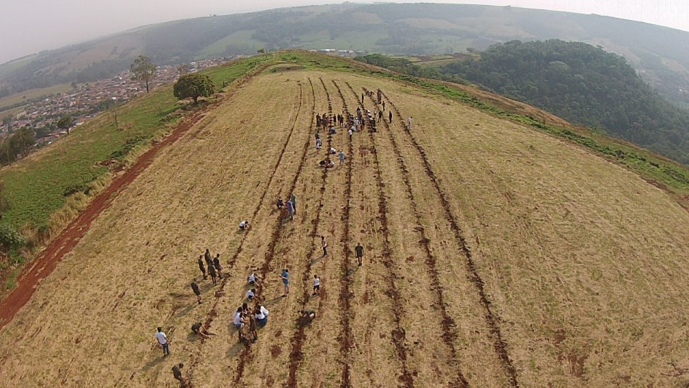 Prefeitura celebra Dia da Árvore com plantio de 1000 mudas nativas no Morro do Bim