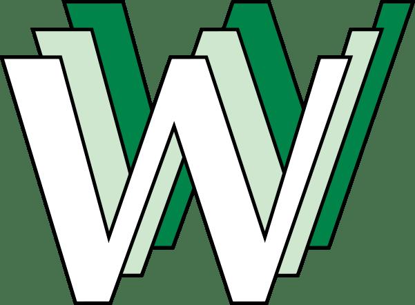 WWW internet 20 anos aniversário