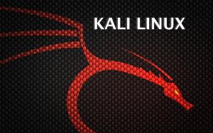 Devo usar o Kali Linux?