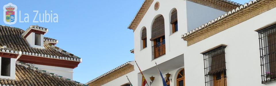 Plenos Ayuntamiento de La Zubia