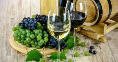 Mudança climática pode cortar produção de vinho pela metade até 2100