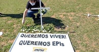 Sem sinal de estabilização, covid 19 já causou a morte de quase 55 mil brasileiros