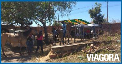Guarda Municipal atende mais de 160 ocorrências durante Lockdown em Teresina