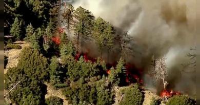 Califórnia: 2600 casas evacuadas devido a incêndio