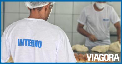 Detentos produzem 1.800 pães por dia em penitenciária no Piauí