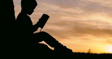 Livros ajudam pais a ensinar valores aos filhos na infância   ViDA & Ação
