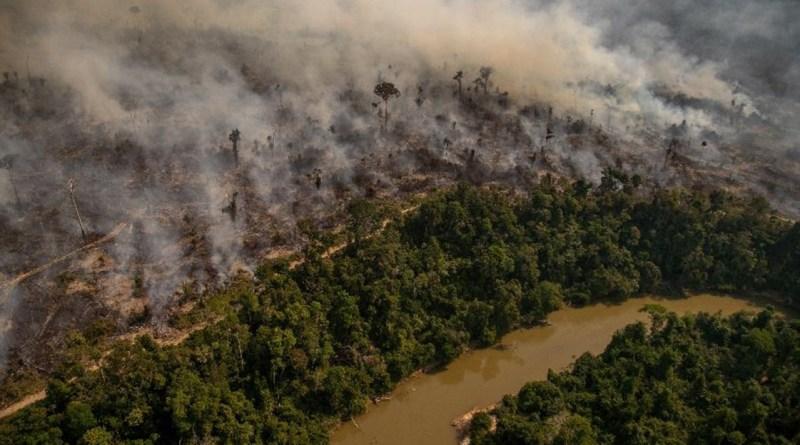 Coalizão Brasil Clima: meta apresentada por Bolsonaro vai na contramão de projeto global