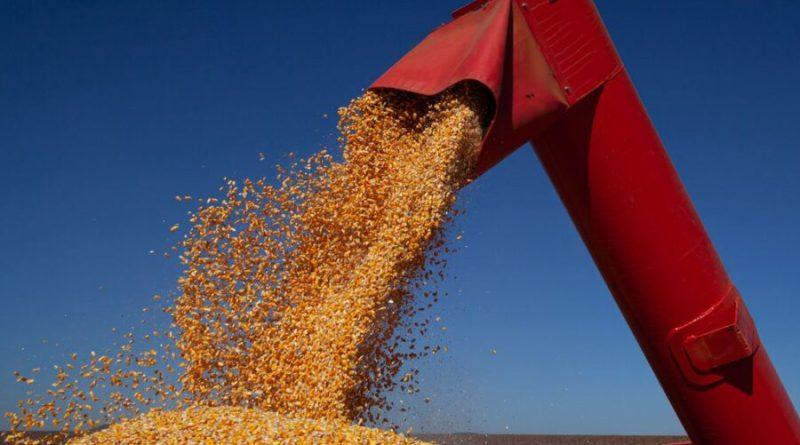 Conab reduz estimativa da safra de grãos para este ano