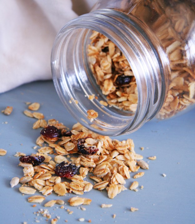 Cranberry Coconut Granola 2