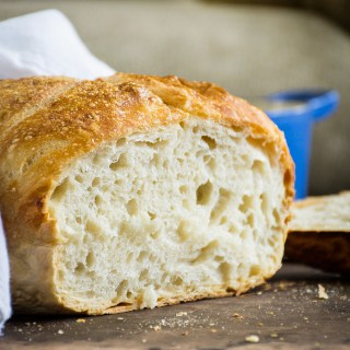 5-Minute No-Knead Bread